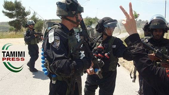 Israeli forces equipped with tear gas grenades and foam bullets in Nabi Saleh